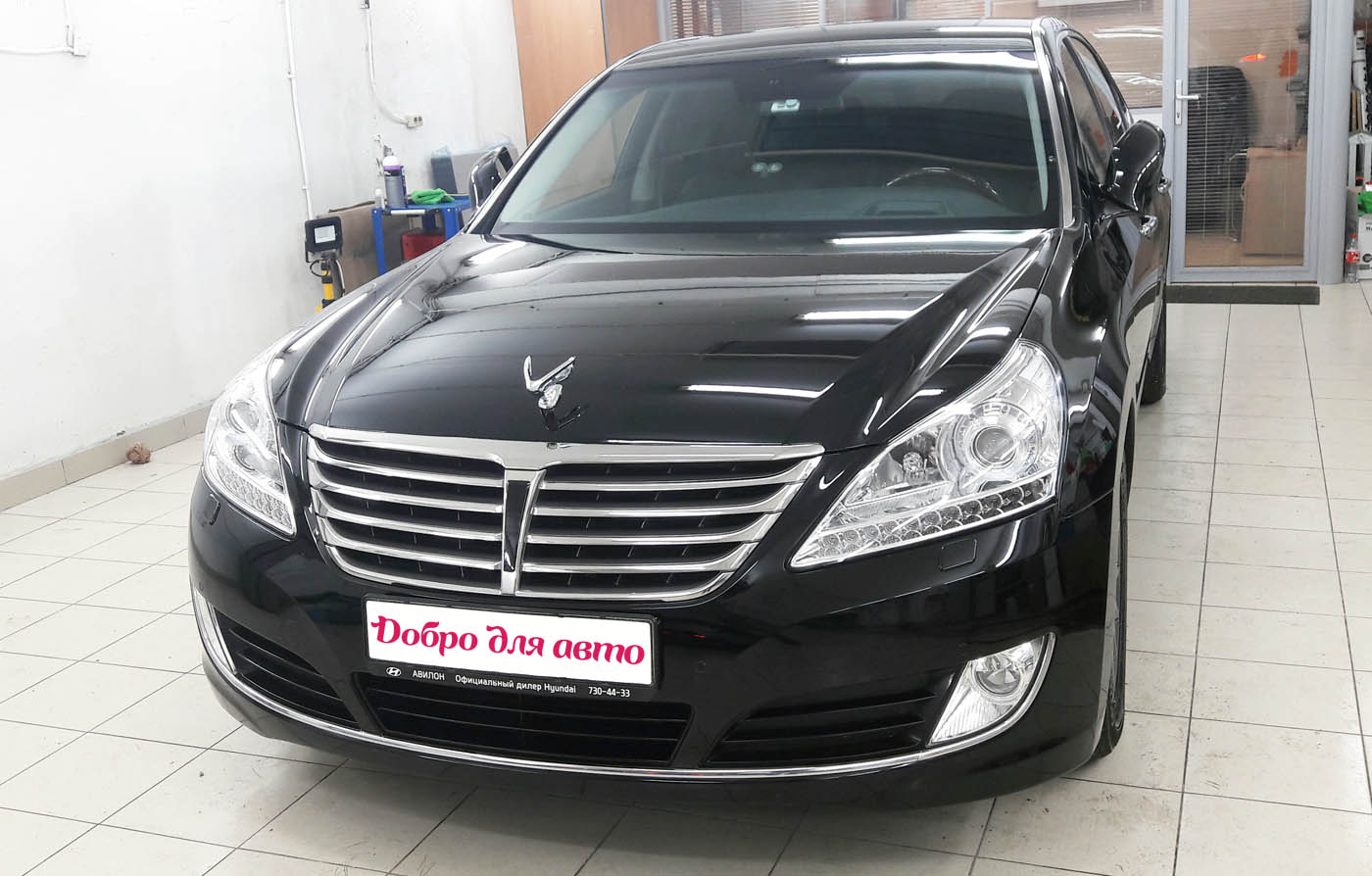 Willson Body Glass Guard на кузов Hyundai Equus